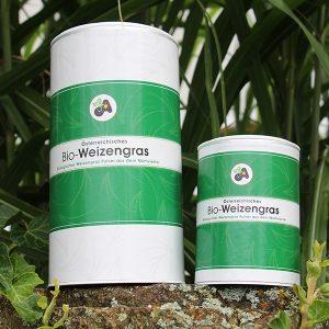 Gerstengras und Weizengras